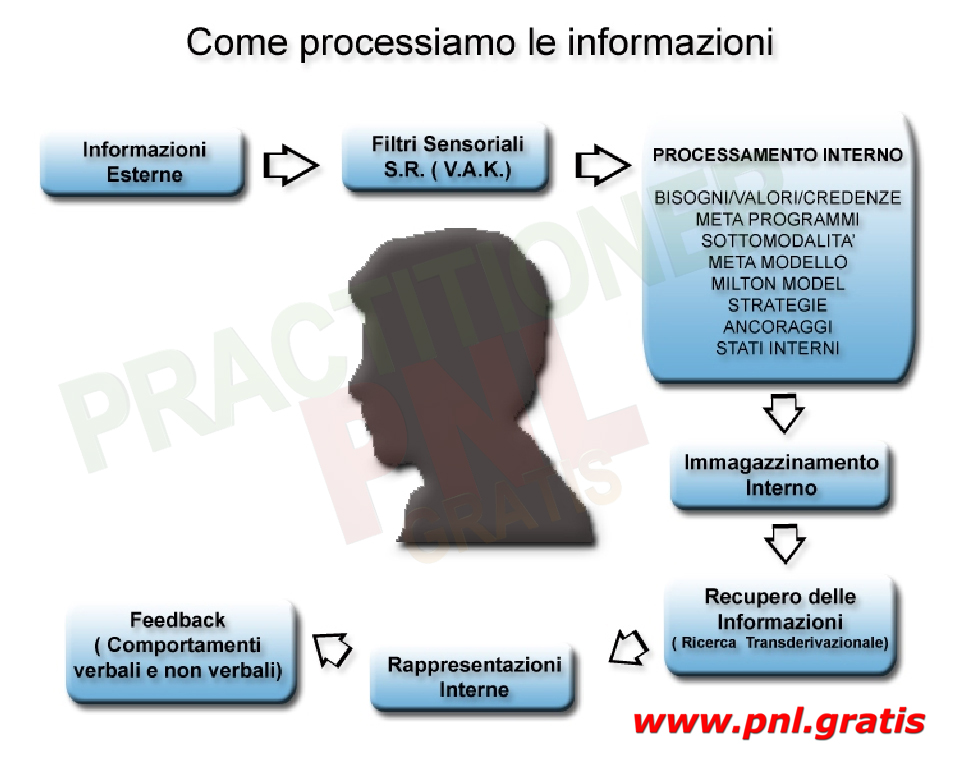 processamento informazioni slide pnl gratis